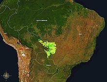 220px-Pantanal_55.76W_15.40S